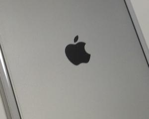 iPhoneの電源を入れたときの起動画面は黒と白の2種類あることに今さら気付いた