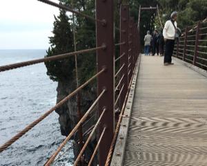 犬と一緒に伊豆旅行 その6:城ヶ崎海岸のつり橋を渡る