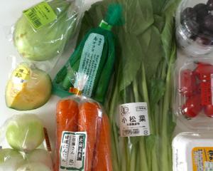 オイシックスの野菜おためしセットが届きました