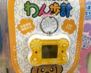 犬用万歩計で運動量を計測!LEDライトや温度表示もついていて便利な「わん歩計」