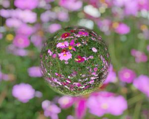 宙玉レンズ風の写真が撮れる無料iPhoneアプリ「ビー玉と共に MarbleCam」