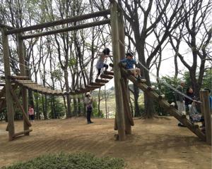 休日に子供と行きたい!アスレチックが充実した内牧公園(埼玉県春日部市)